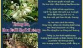 Tháng Ba, Hoa Bưởi Ngát Hương