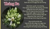 Hoa Bưởi Tháng Ba