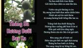 Tháng Ba Hương Bưởi Bay Xa