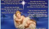 Chào Mừng Thiên Chúa Giáng Sinh, 2014