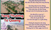 Tang Thương Tứ Quảng & Miền Trung Bão Lũ