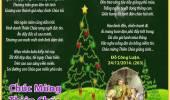 Chúc Mừng Thiên Chúa Giáng Sinh